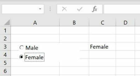 vba-option-button-female