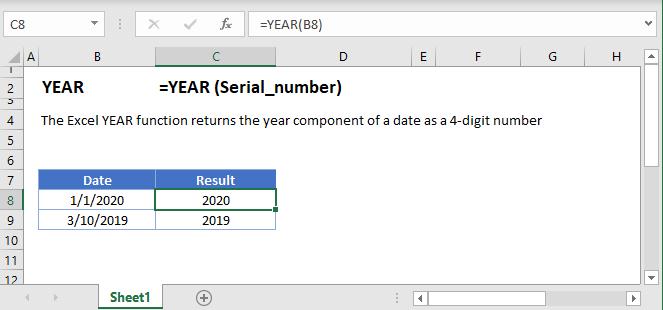 YEAR Main Function