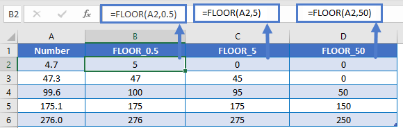 FLOOR 0.5 5 50